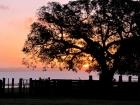 Uruguay entre los 10 mejores destinos éticos del mundo